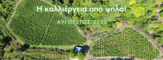Drone_2020_Banner